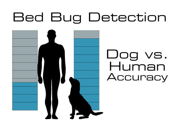 Dog vs Human Detection Accuracy